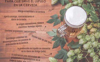 Para qué sirve el lúpulo en la cerveza